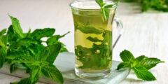 فوائد شرب النعناع للجسم