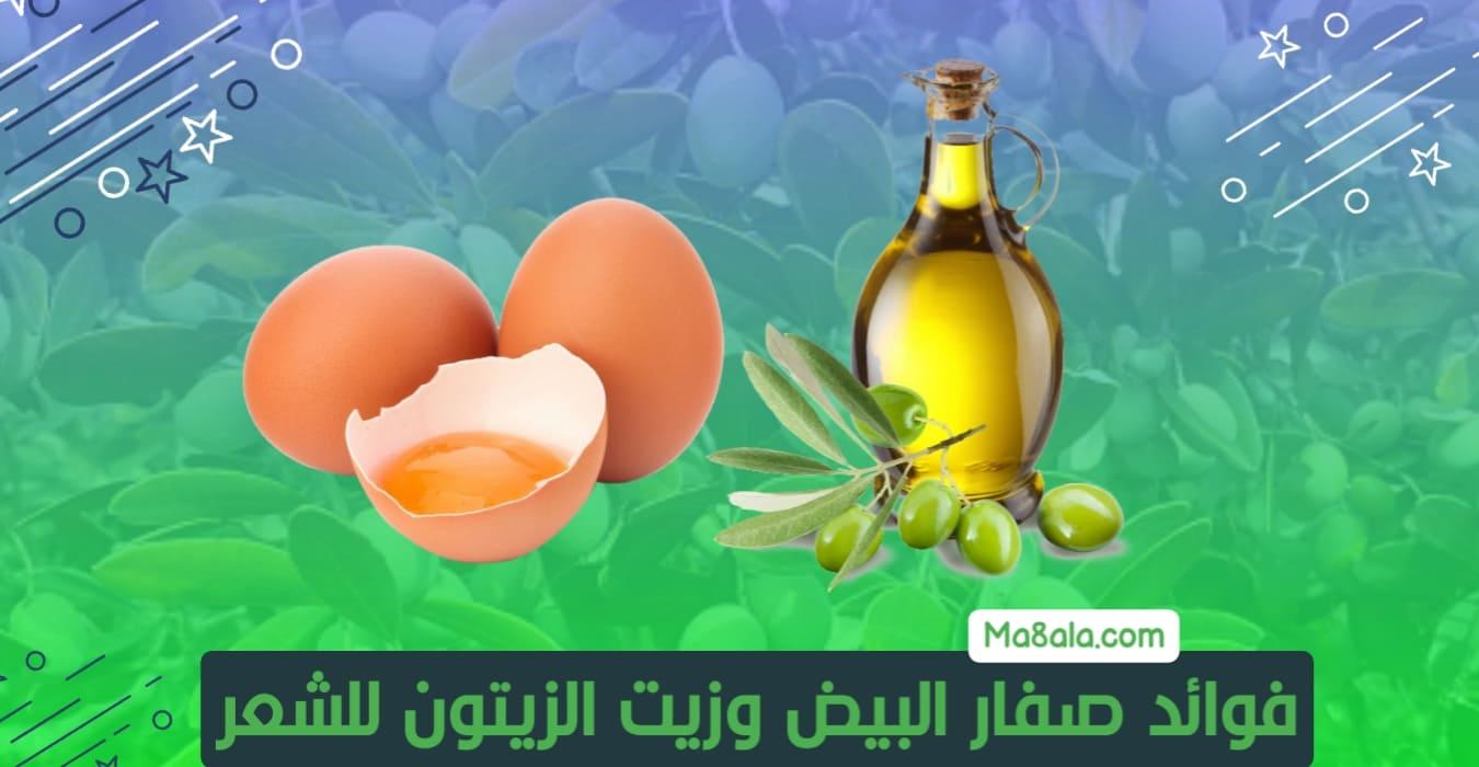 فوائد صفار البيض وزيت الزيتون