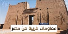 معلومات غريبة عن مصر