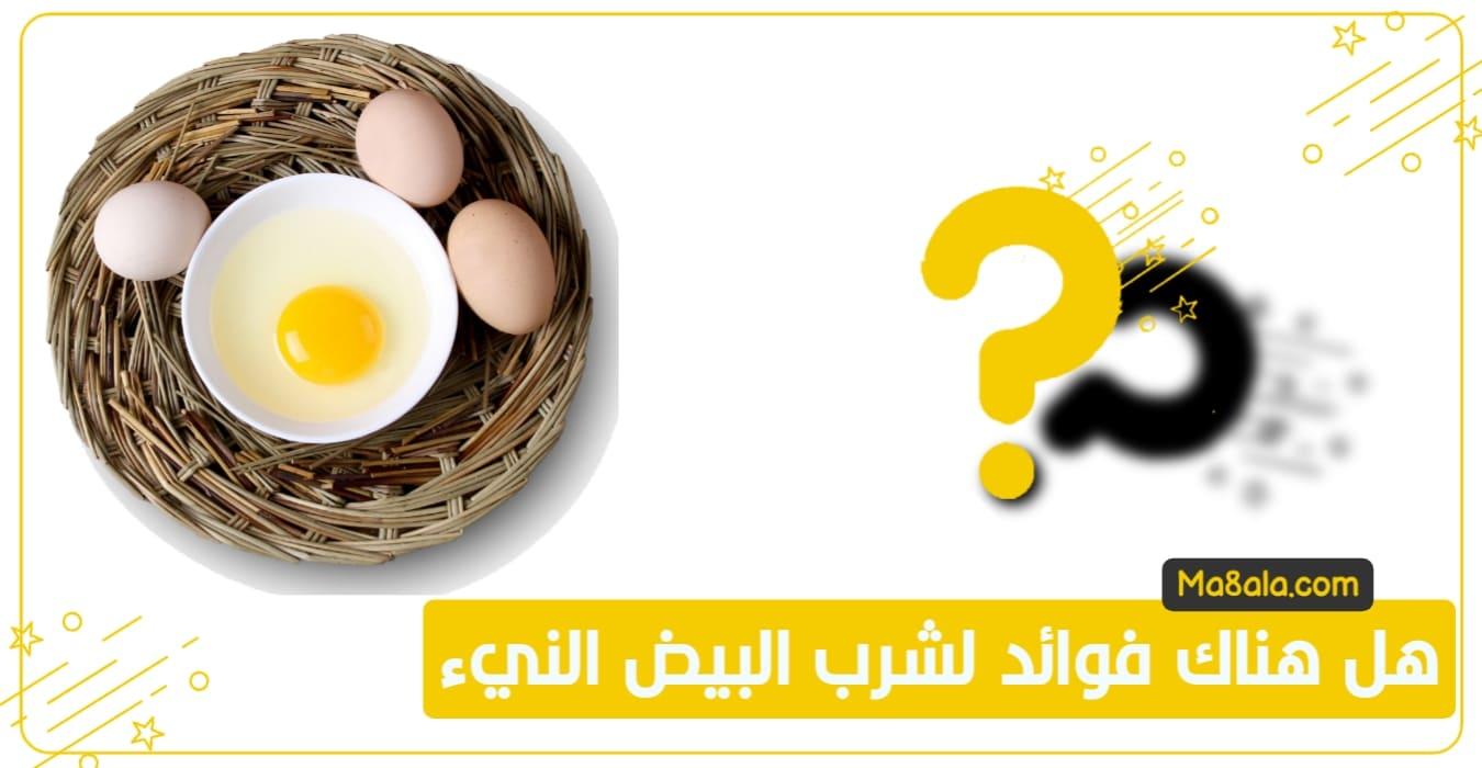 هل هناك فوائد لشرب البيض
